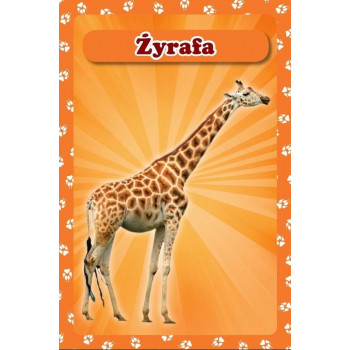 Karty Poup 3D - Zwierzęta