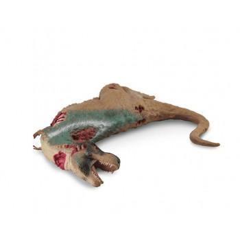 Dinozaur Tyranozaur zwłoki