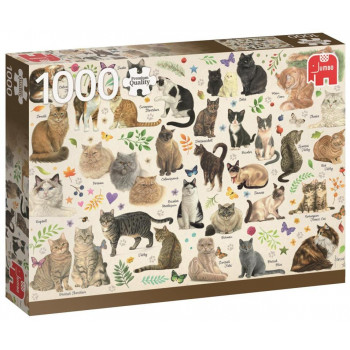 Puzzle 1000 PC Westering Koty G3
