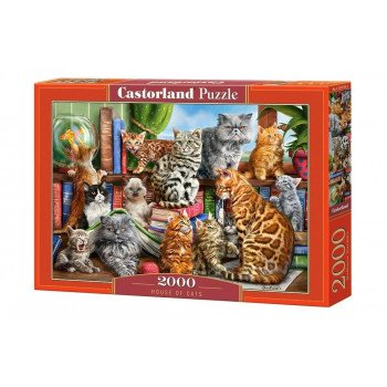 Puzzle 2000 House of Cats CASTOR