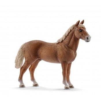 Schleich Koń Morganowy...